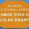 Reunión GEIS tumor óseo
